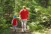 Father and Son walking on trail in woods